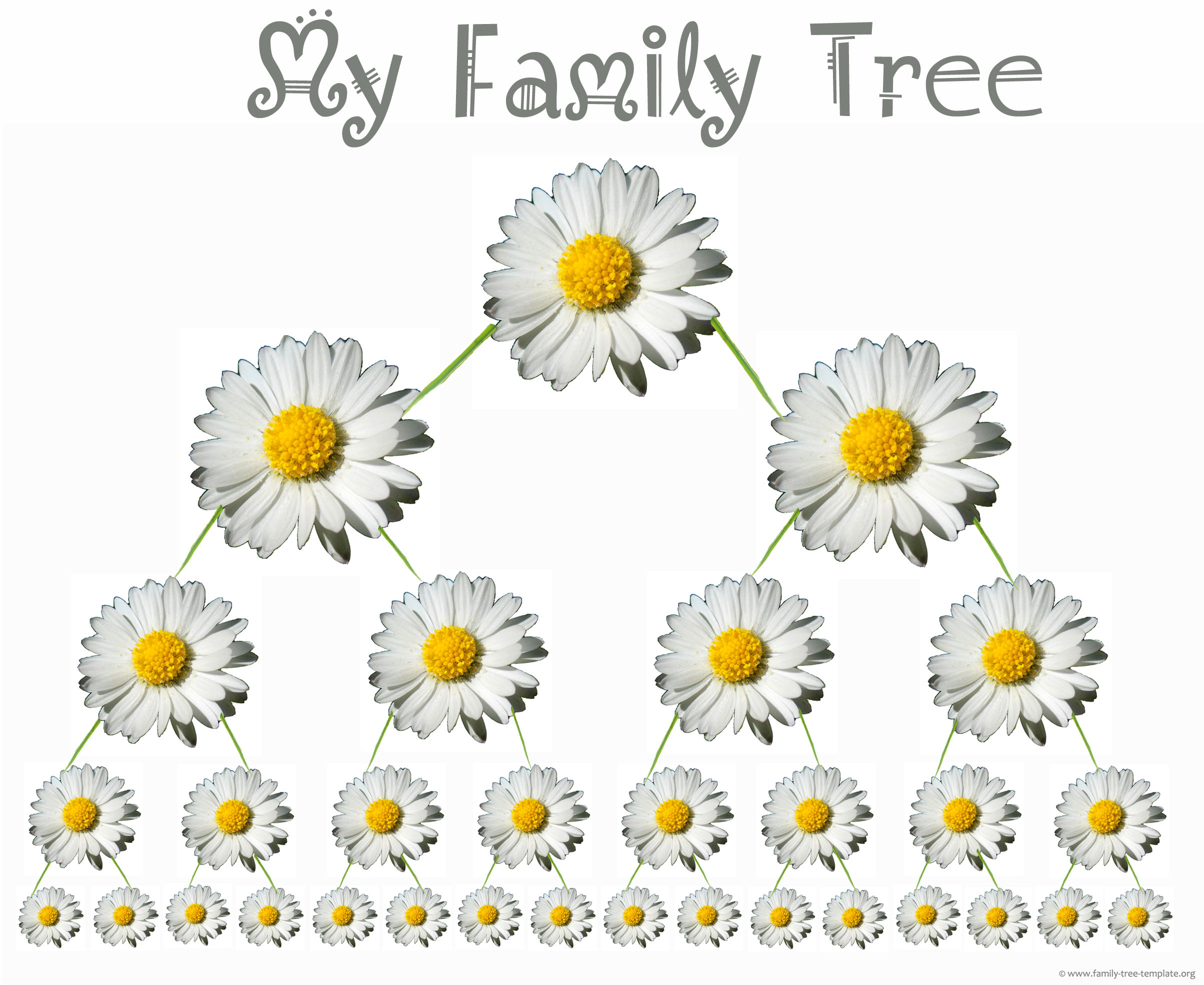 Daisies kids family tree printout with pretty daisies.