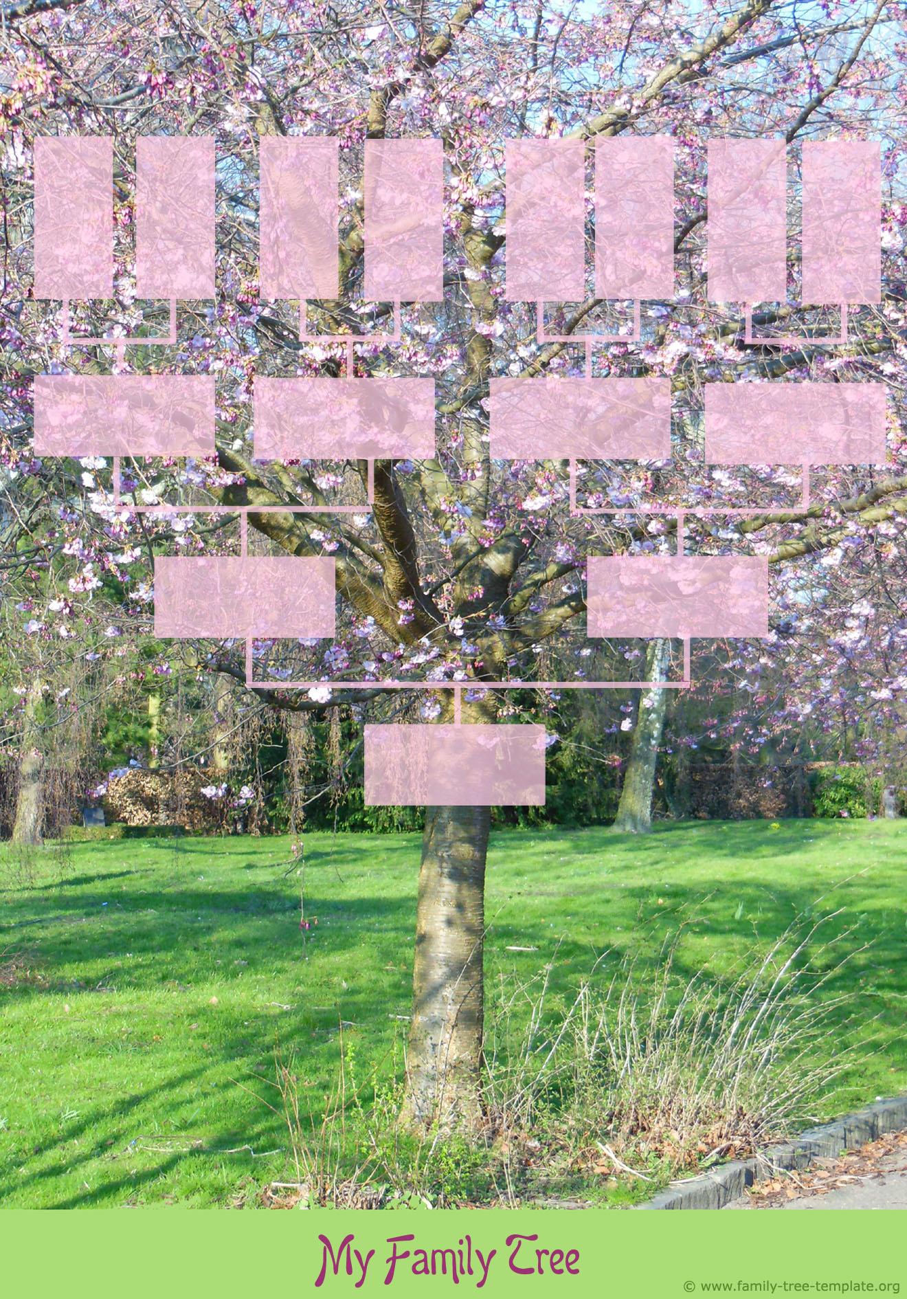 Printable family tree template design. Spring tree with small pink flowers.