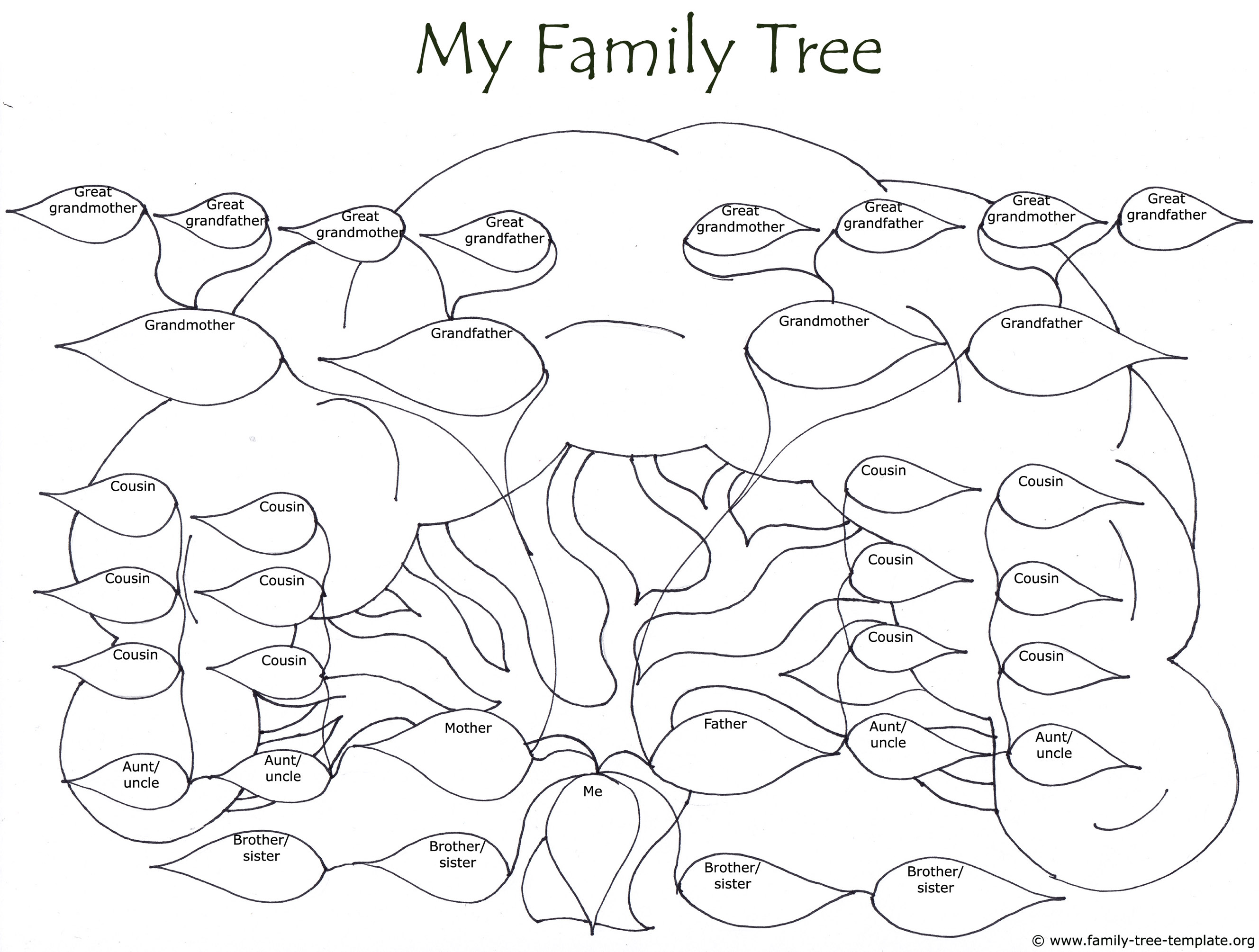 Huge family tree drawing to color