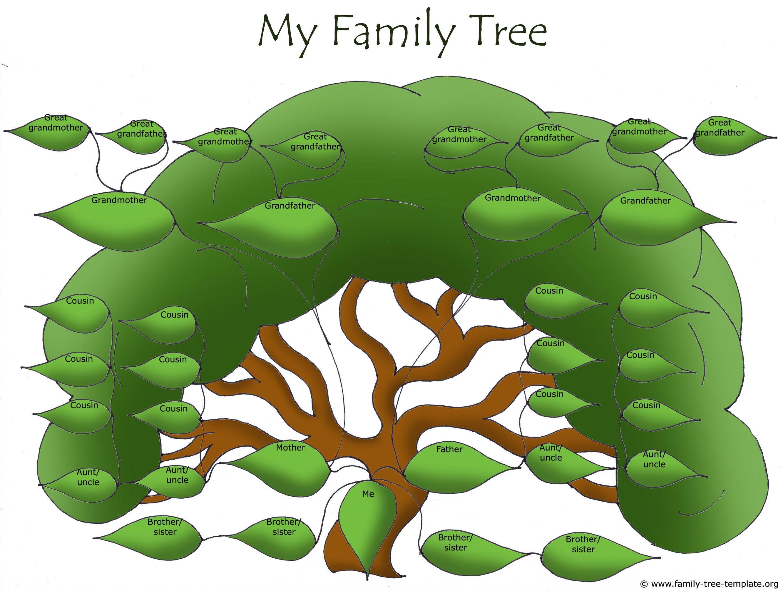 Huge family tree for extended family