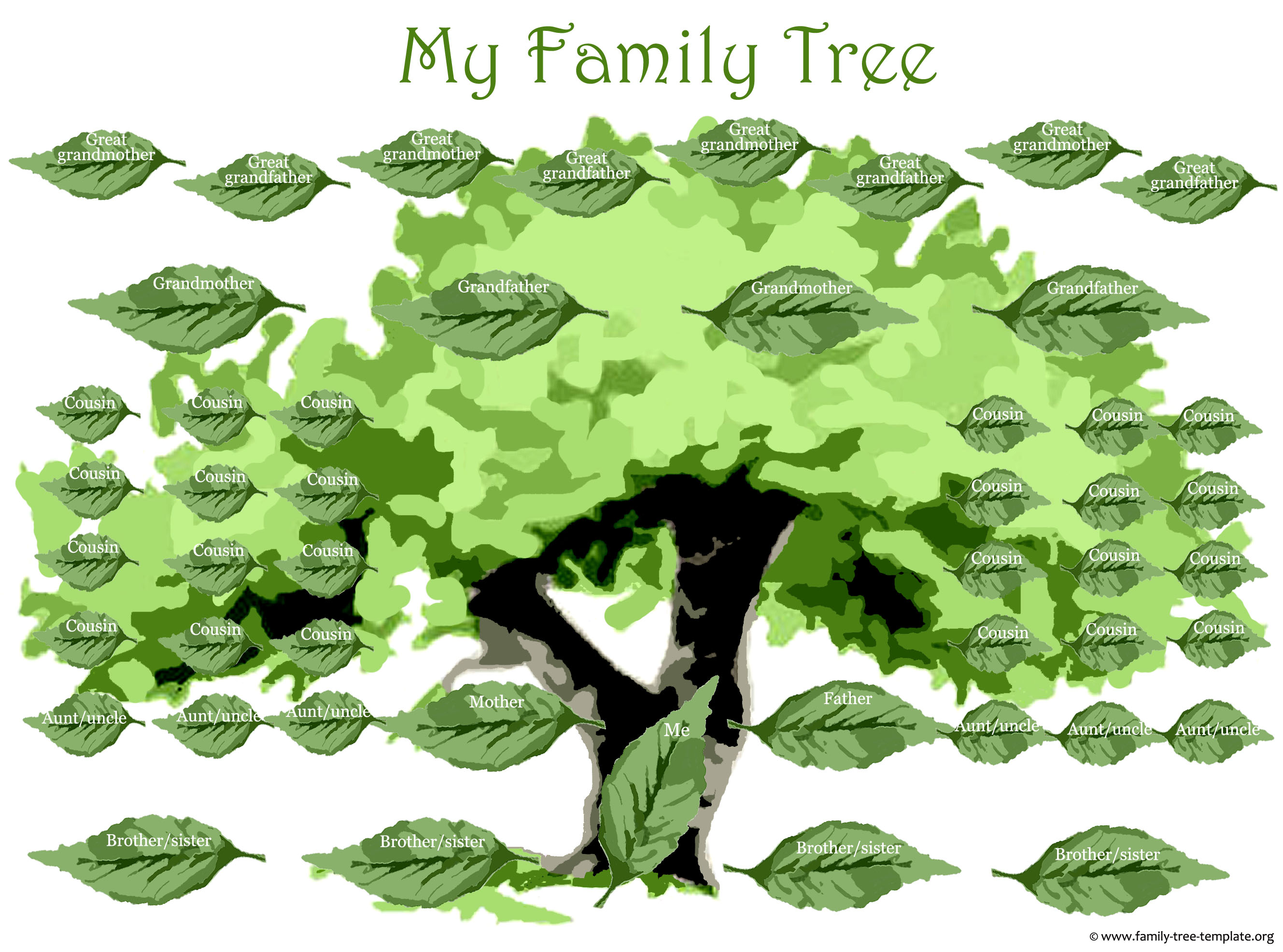 Big family tree form to include the whole immediate family.