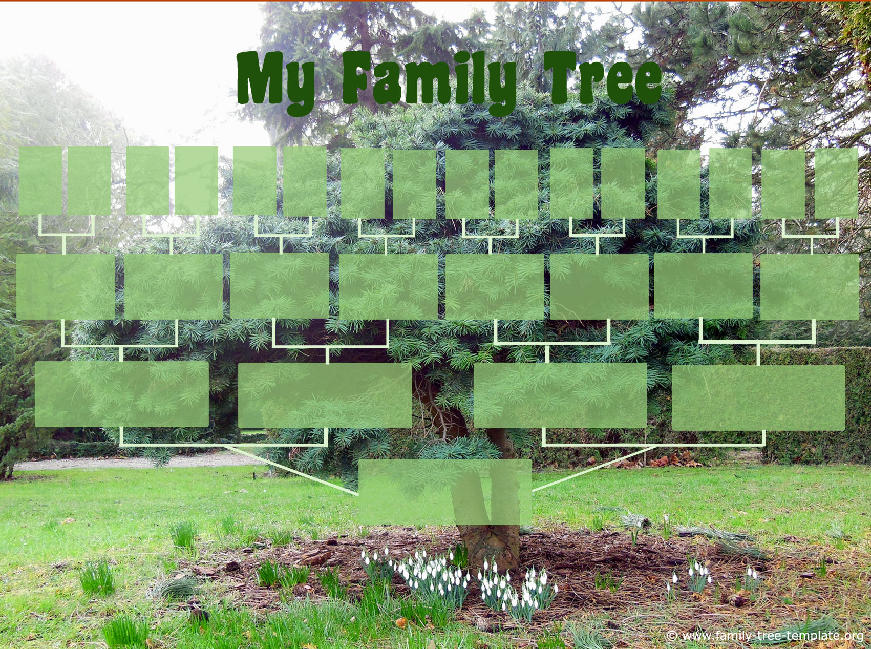 Beautiful family tree chart from winter scene with snowdrops. Tracing lineage to great grandparents.