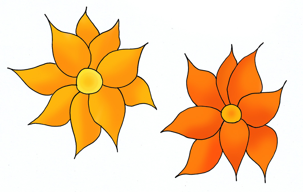 Orange flower drawings