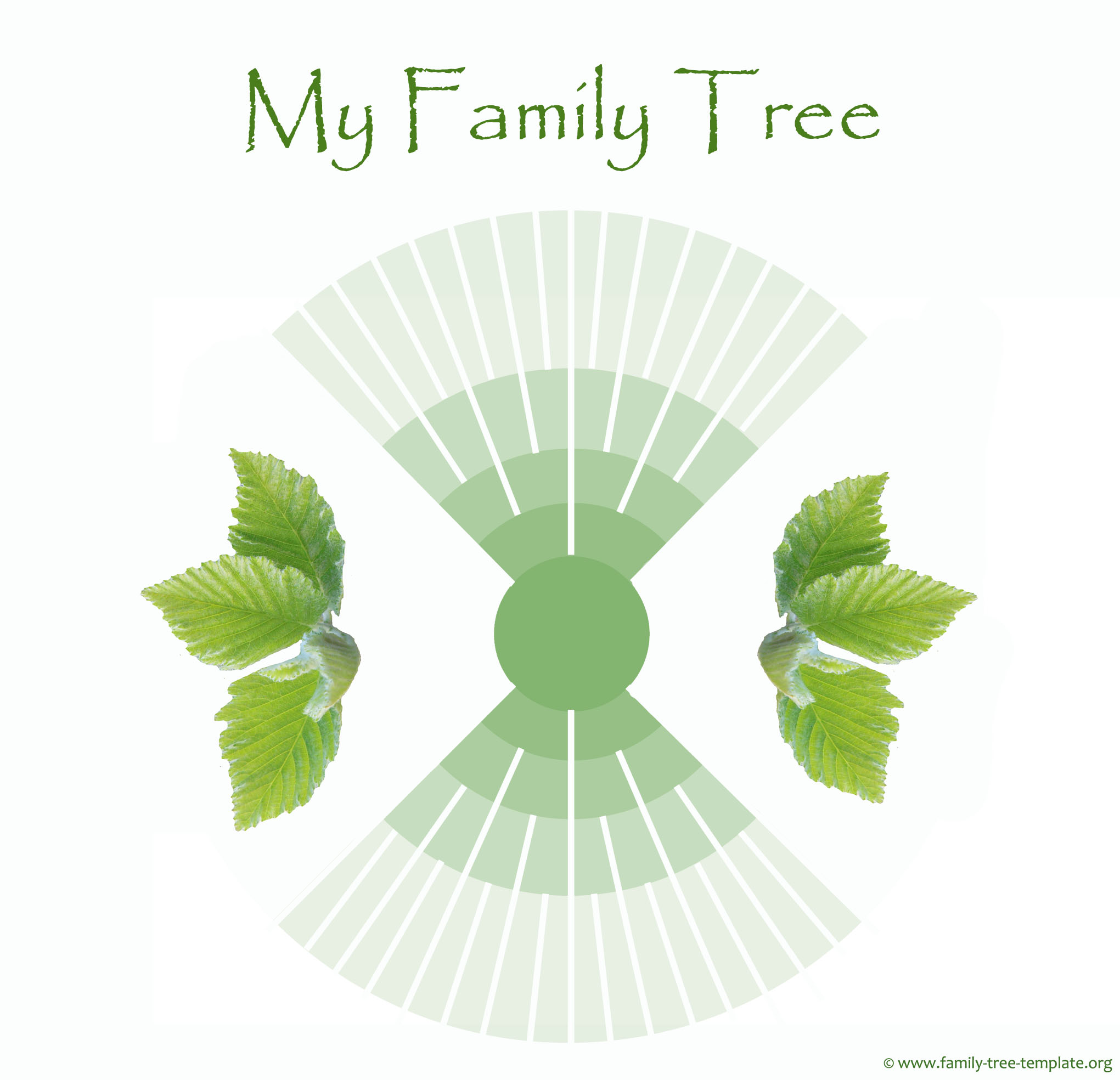 5 generations ancestry tree for kids.