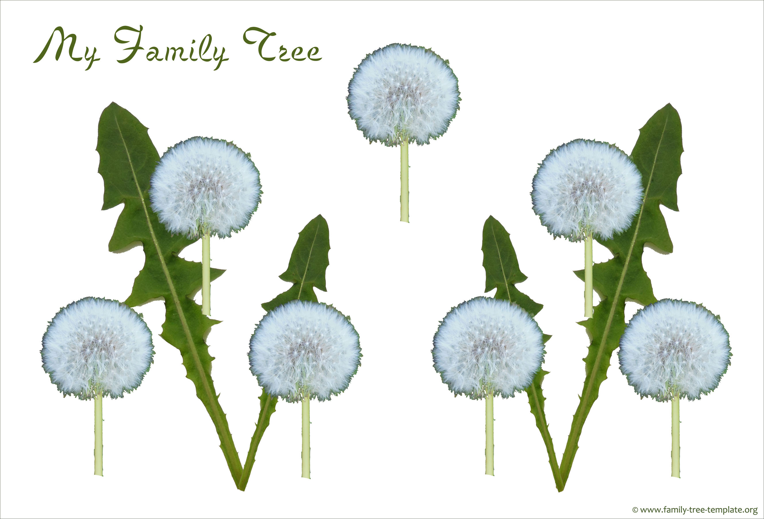 Simple family tree with 3 generations for the small child.