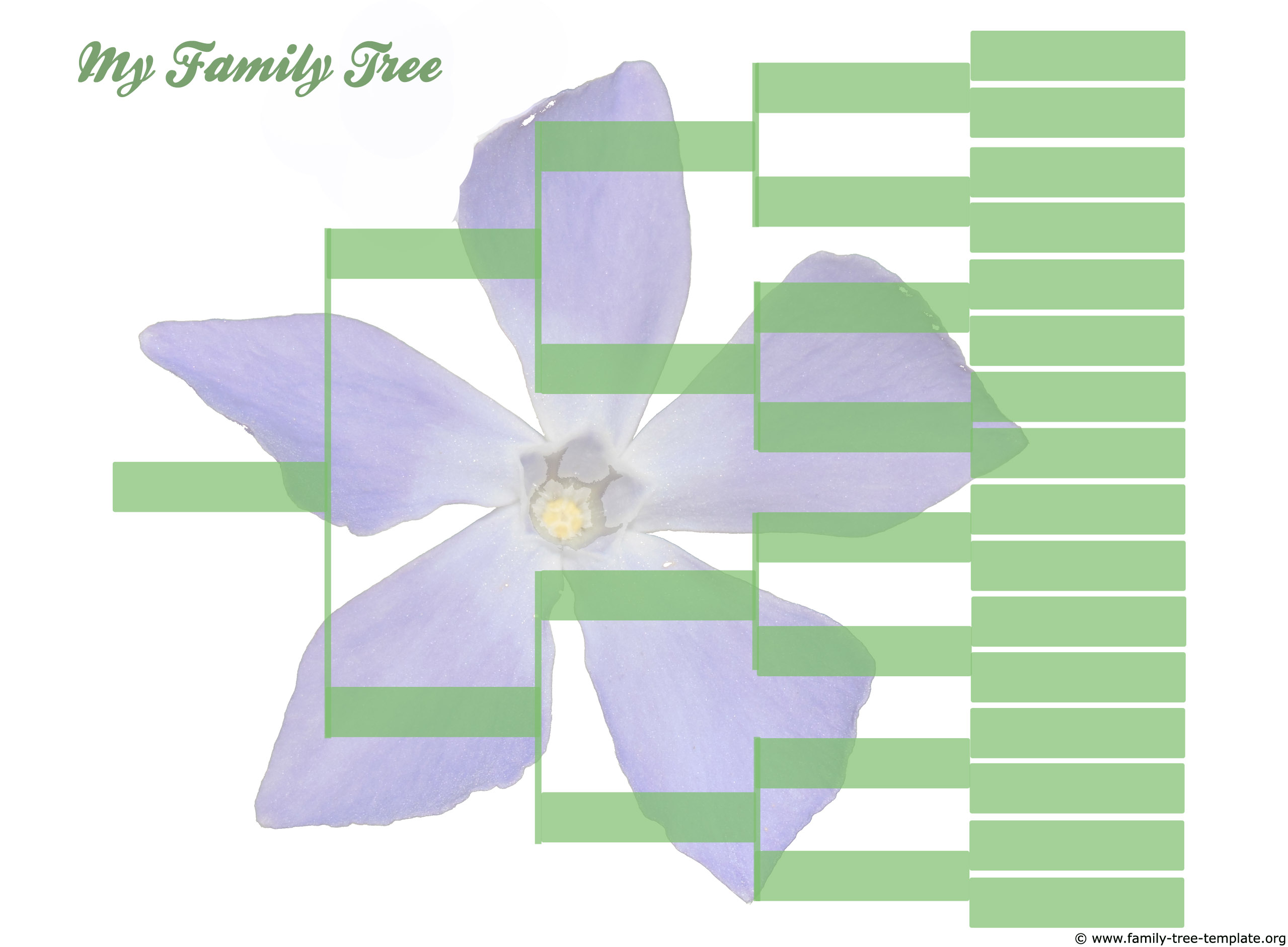 5 generation family tree chart
