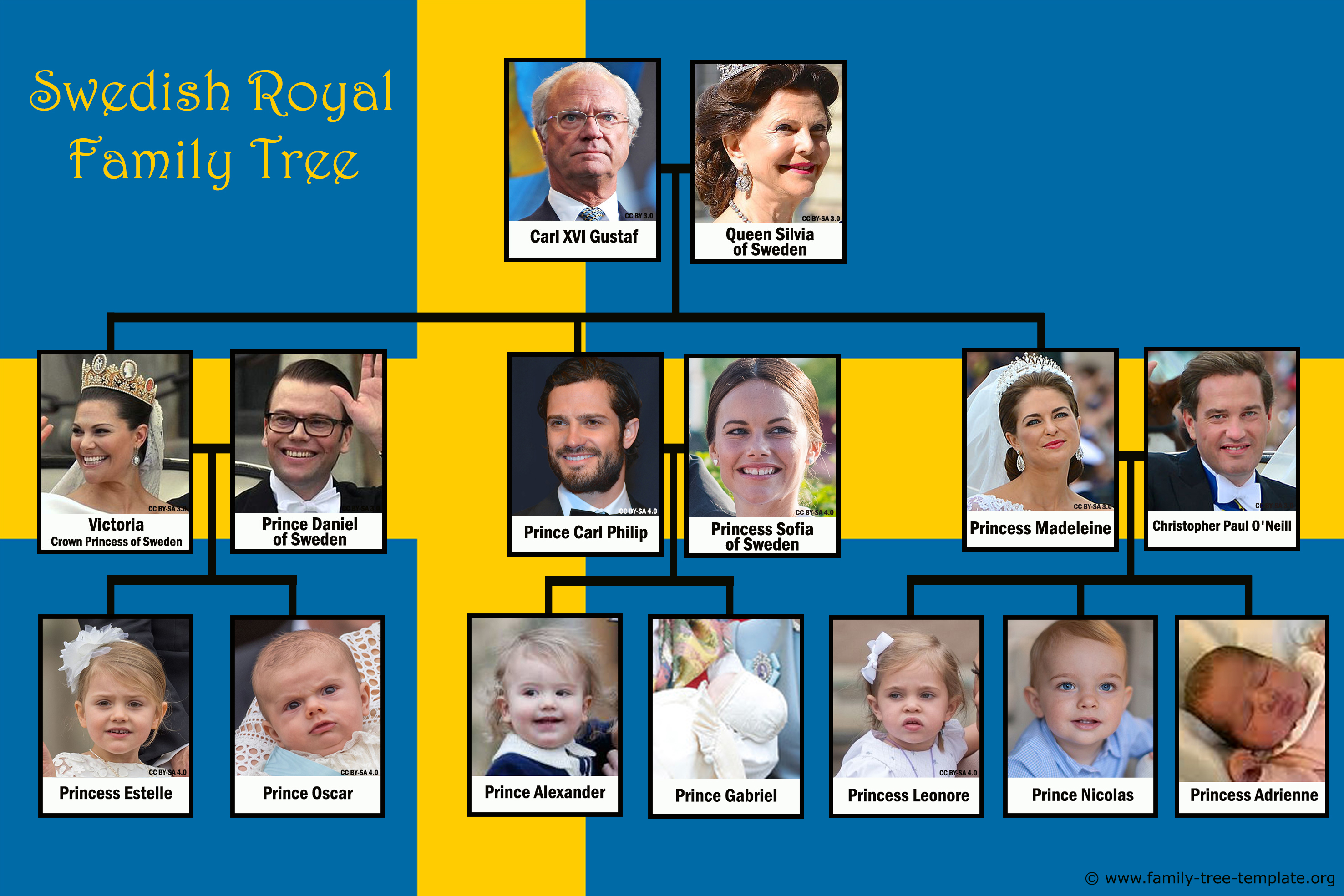 Swedish Royal family tree with King Carl XVI Gustav.